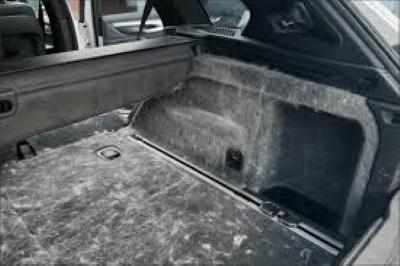 Tierhaarentfernung Auto Fürth